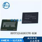 H9TP32A4GDCCPR-KGM