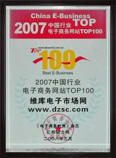2007中国行业电子商务网站TOP100
